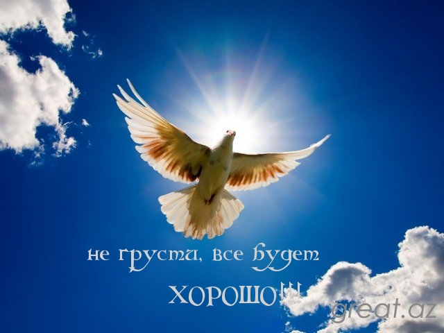 http://imagetext.ru/pics_max/images_3615.jpg