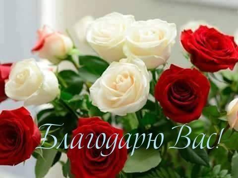 http://imagetext.ru/pics_max/images_11706.jpg