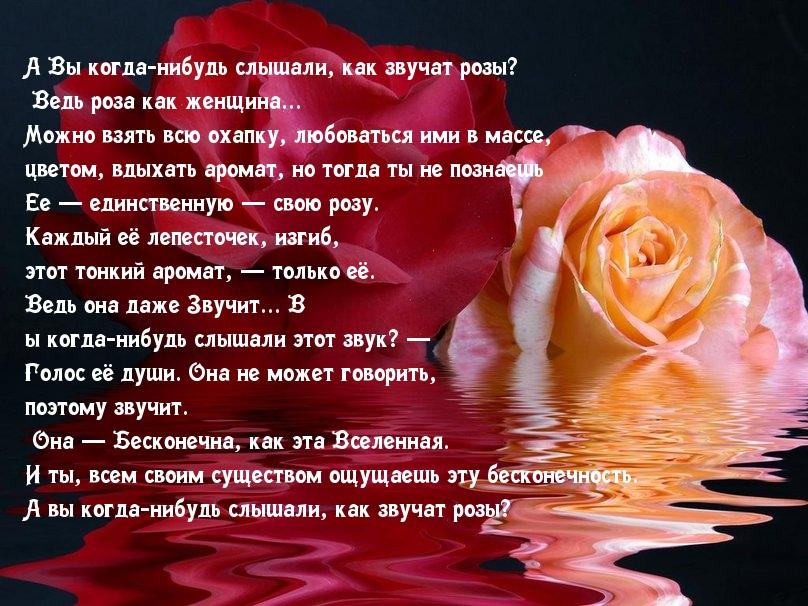 стихи о розах и страсти