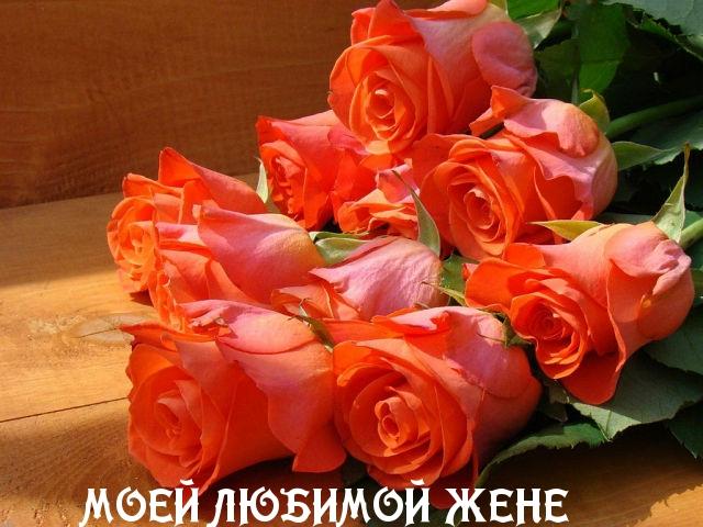 Поздравления на день рождения картинки с надписями