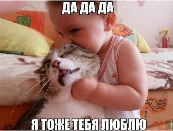 я тоже тебя люблю картинка