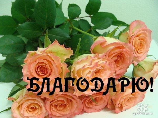 http://imagetext.ru/pics_max/images_6974.jpg