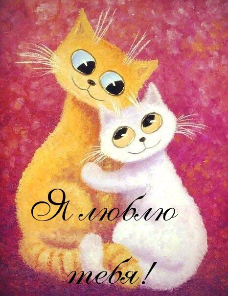 Прикольные поздравления с днем рождения котята